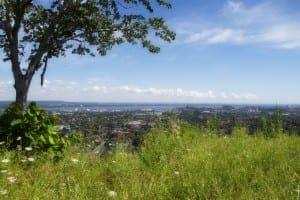 Overlooking Hamilton