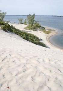 Dunes at Sandbanks PP