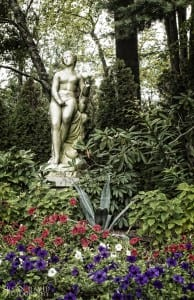 The Woman in the Garden