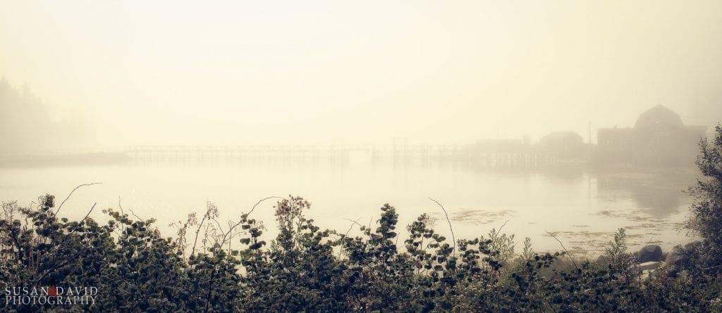 As the Fog Settles In