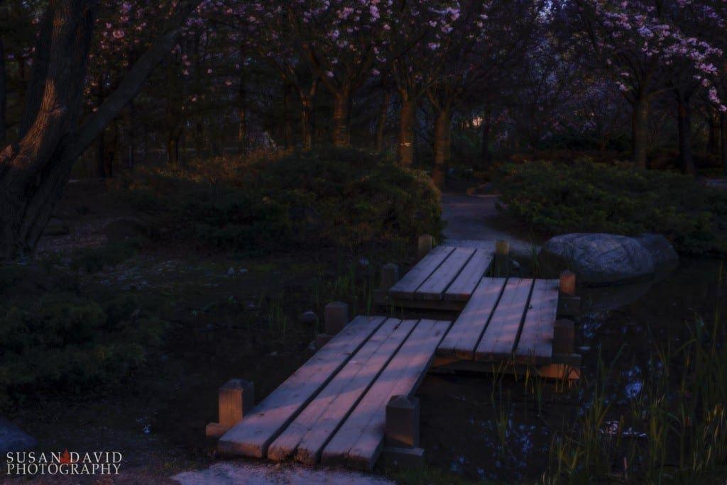 Night in Kariya
