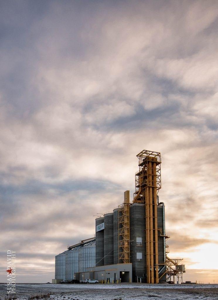 Modern Grain Mill