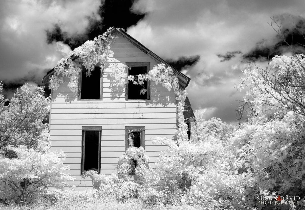 Home in Ruins Infrared