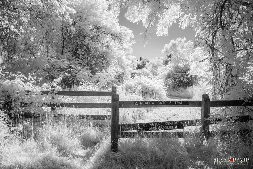 Humber River Meadow Gate