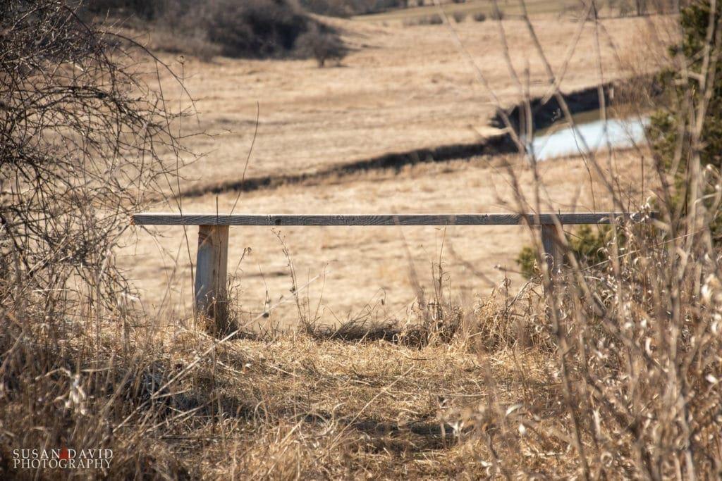 Bench Views
