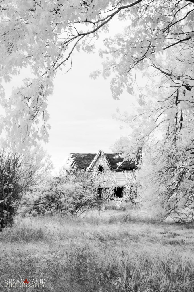 Abandoned House IR