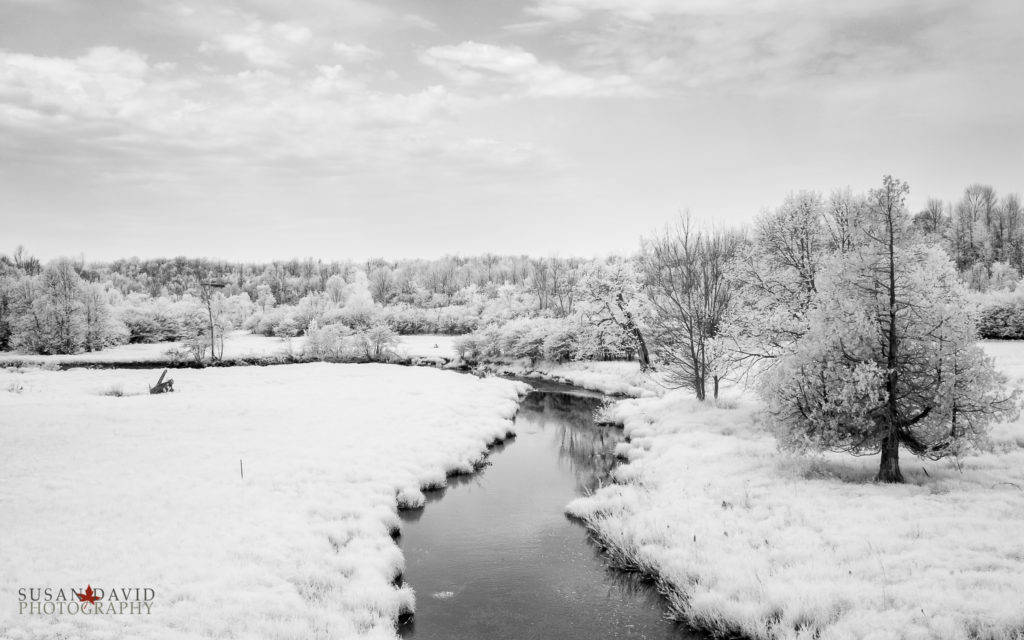 River in InfraRed
