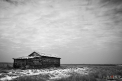 Old Shed SASK