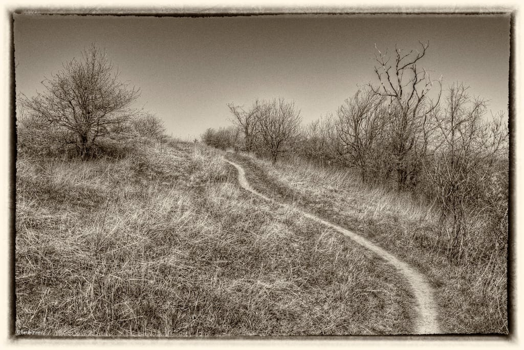 the-uphill-path.jpg