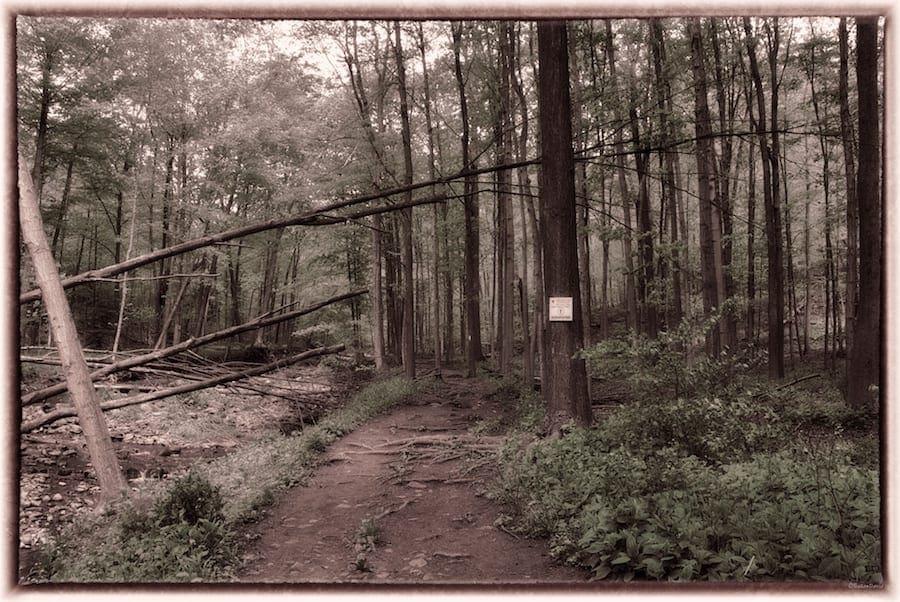 grindstone-creek-1.jpg