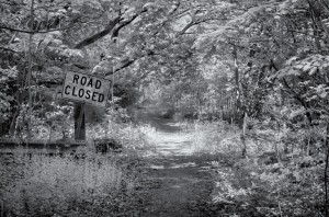 Road-Closed-300x198.jpg