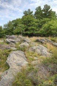 Rock Walk