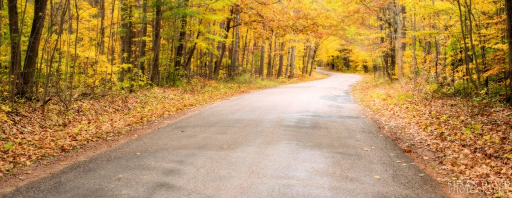Awenda_Autumn-Road-1024x397.jpg