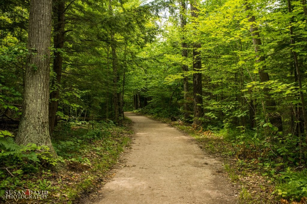 Path to the Swimming Hole