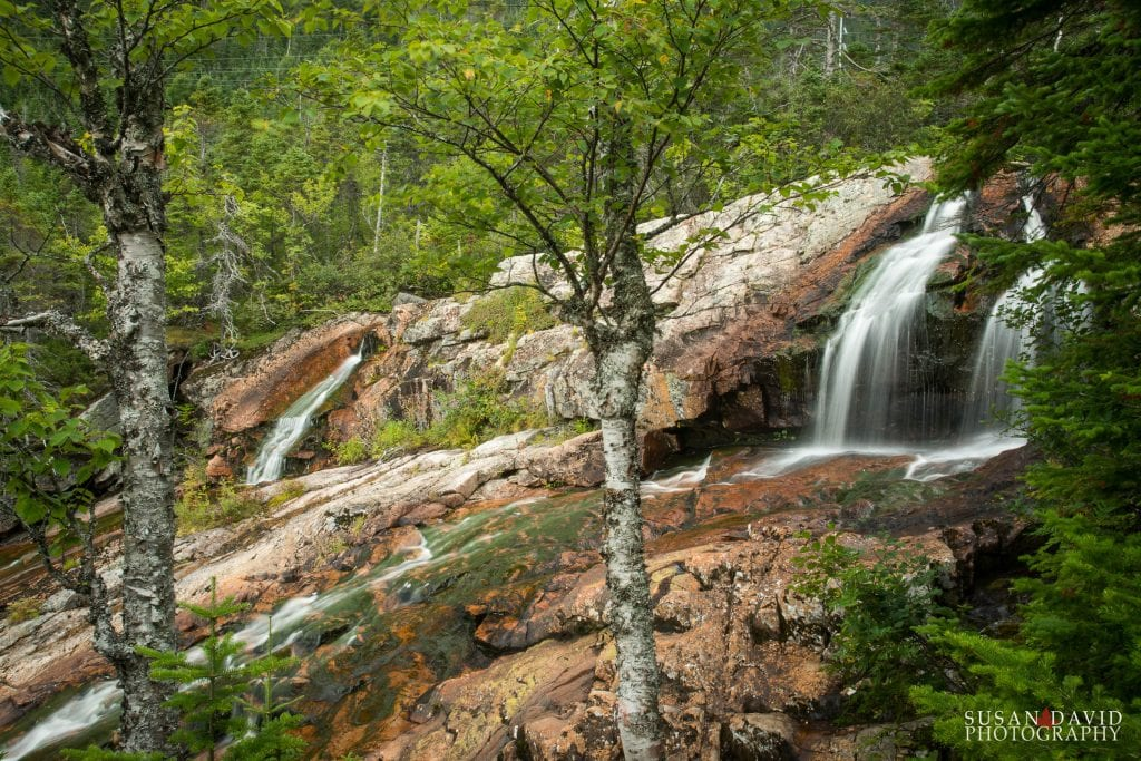 Southeast-Brook-Falls-1024x683.jpg