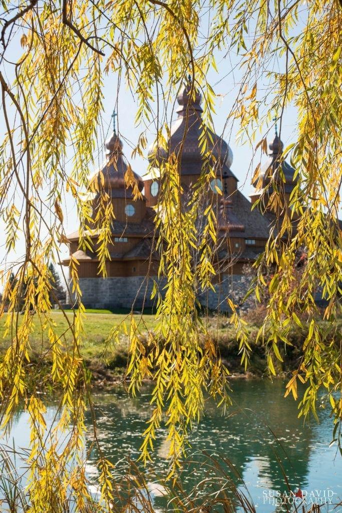 Willow-at-St.-Elias-683x1024.jpg
