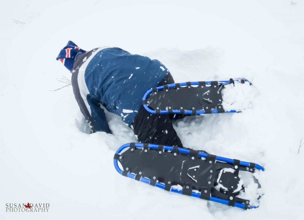Snowshoe Problems