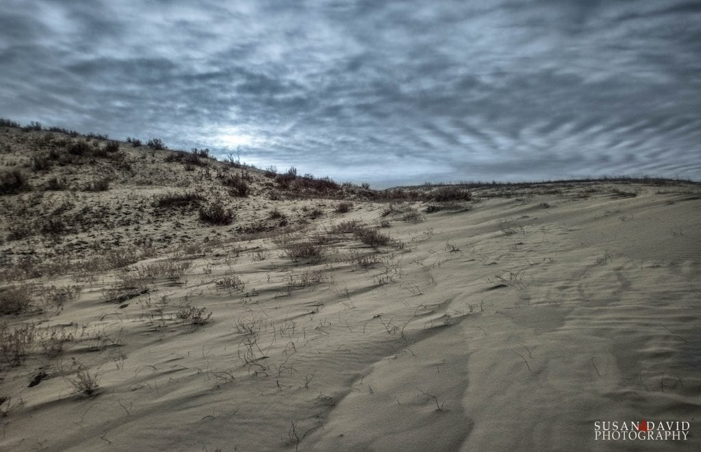Great Sandhill Dunes