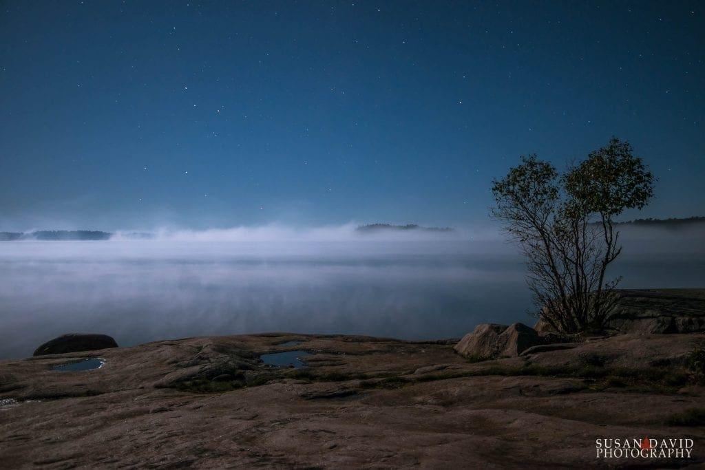 Enveloping Mist
