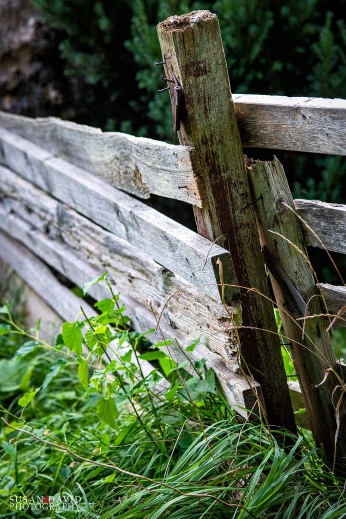An Old Fence