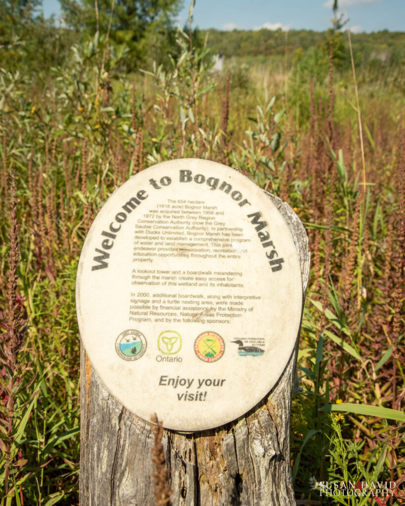 Bognor Marsh Sign