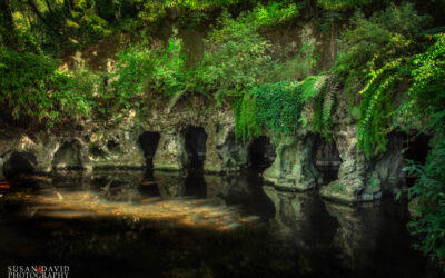The Summer Homes of Sintra: Part 3