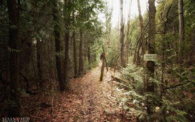 The Bear Den Trail