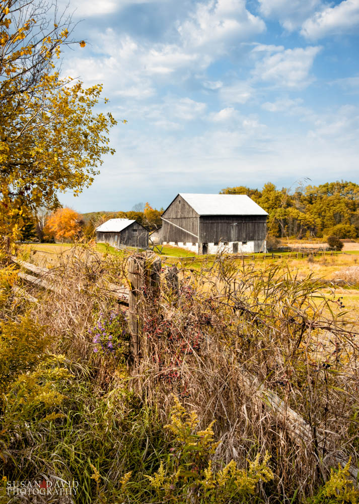 Thompson Farm and Fence